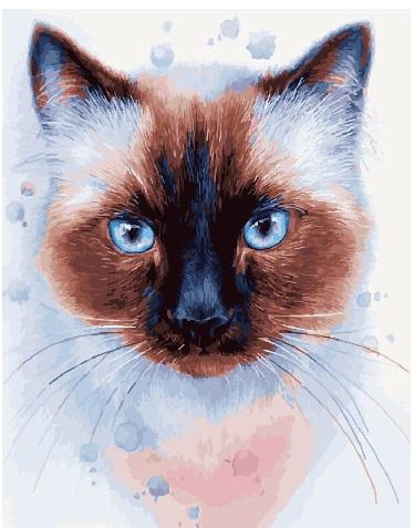 Картина по номерам Животные, птицы и рыбы - Фантастический сиамец
