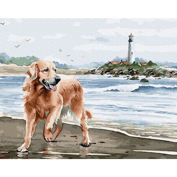 Картина по номерам Животные, птицы и рыбы - Лабрадор на прогулянці