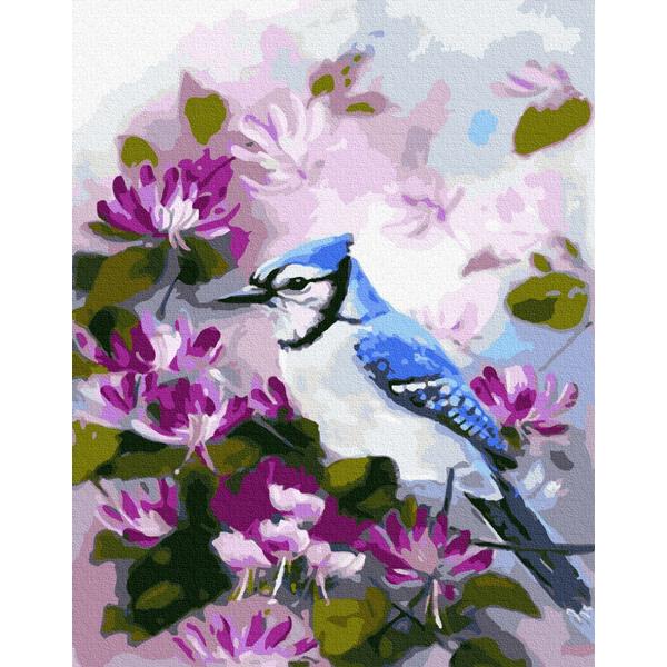 Картина по номерам Животные, птицы и рыбы - Сойка в квітах