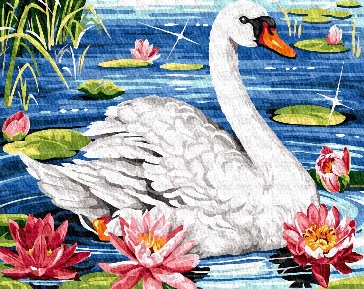 Картина по номерам Животные, птицы и рыбы - Лебедь в лотосах