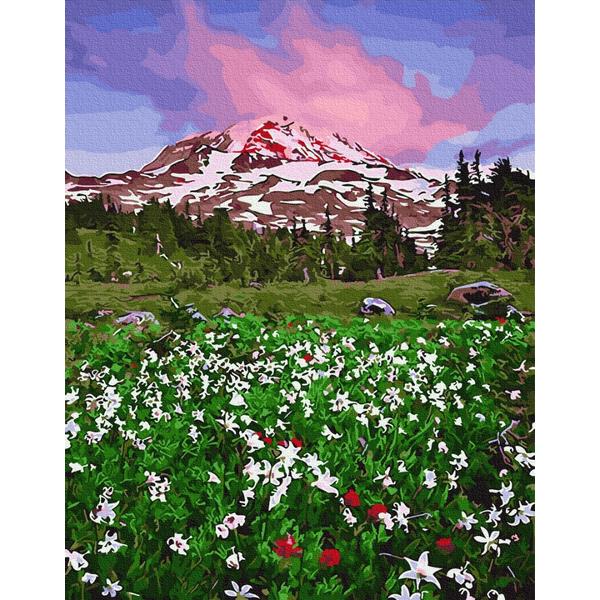 Картина по номерам Пейзажи - Квітуча долина