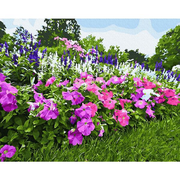 Картина по номерам Пейзажи - Цветущая петуния
