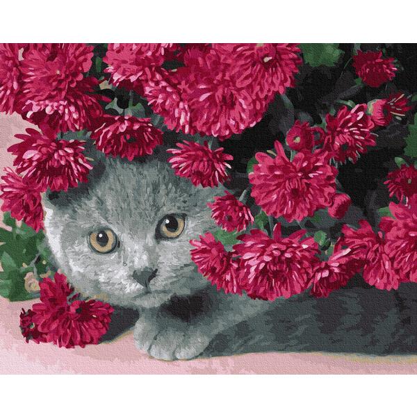 Картина по номерам Животные, птицы и рыбы - Котик в квітах