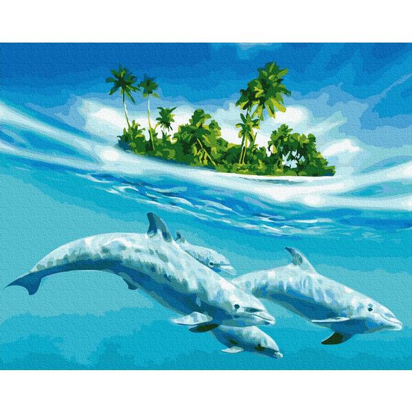 Картина по номерам Животные, птицы и рыбы - Плавання з дельфінами