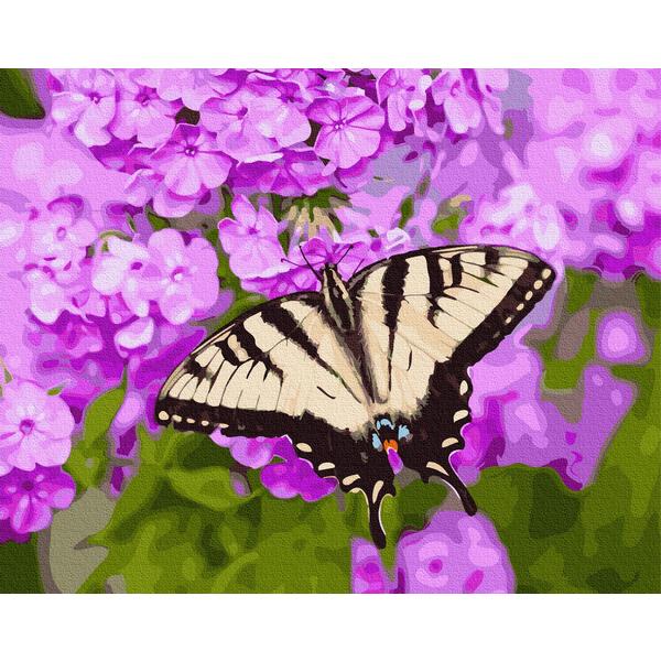 Картина по номерам Цветы - Бабочка в цветах