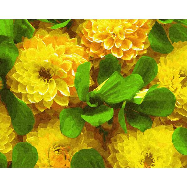 Картина по номерам Цветы - Желтые георгины