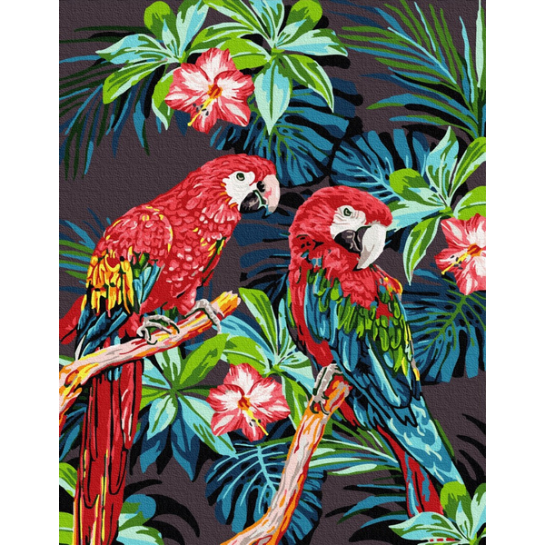Картина по номерам Животные, птицы и рыбы - Яркие папугаи
