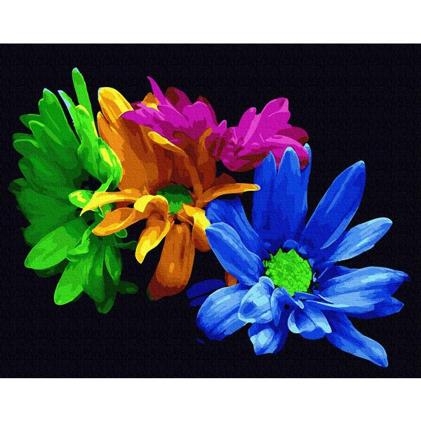 Картина по номерам Цветы - Яркие хризантемы