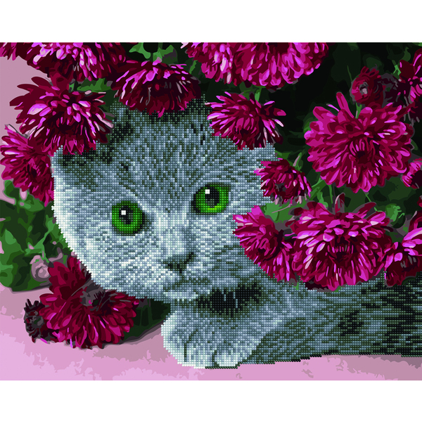 Алмазные картины-раскраски - Британець в квітах