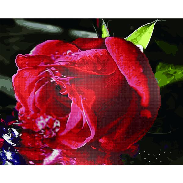Алмазные картины-раскраски - Червона троянда