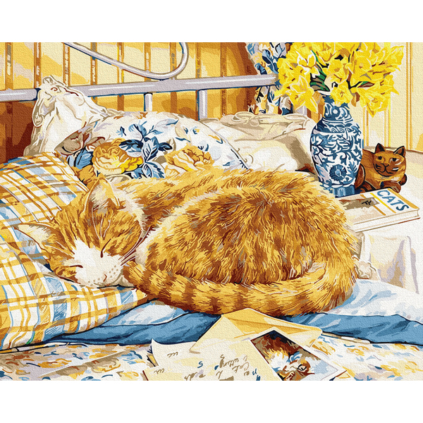 Картина по номерам Животные, птицы и рыбы - Котик-соня