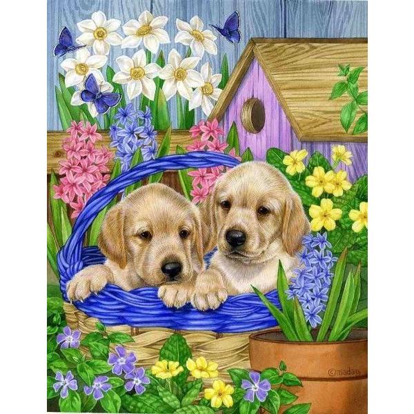 Картина по номерам Животные, птицы и рыбы - Собаки в садовой корзине