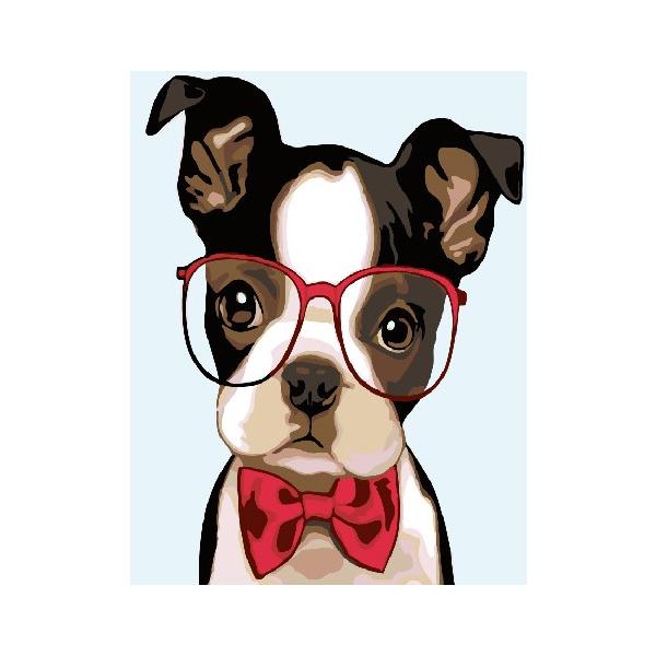 Картина по номерам Для начинающих - Интеллигентная собачка