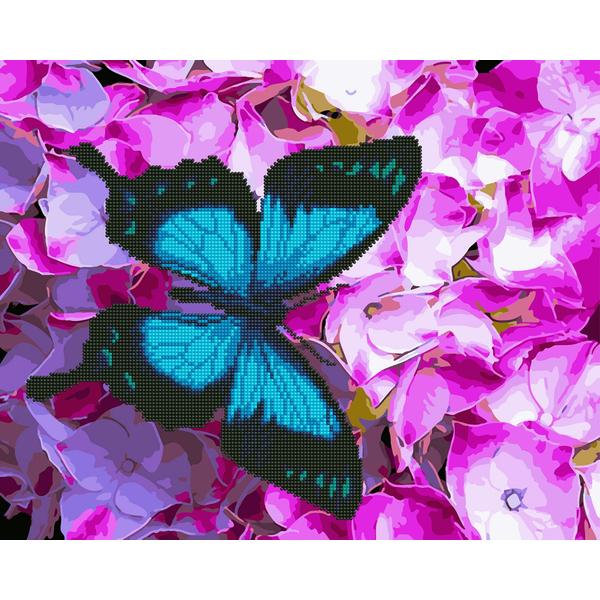 Алмазные картины-раскраски - Метелик на квітах