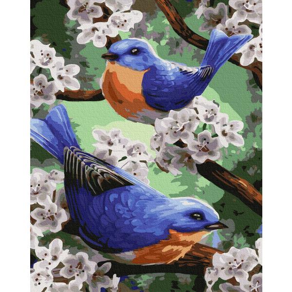 Картина по номерам Животные, птицы и рыбы - Синички в первоцвете