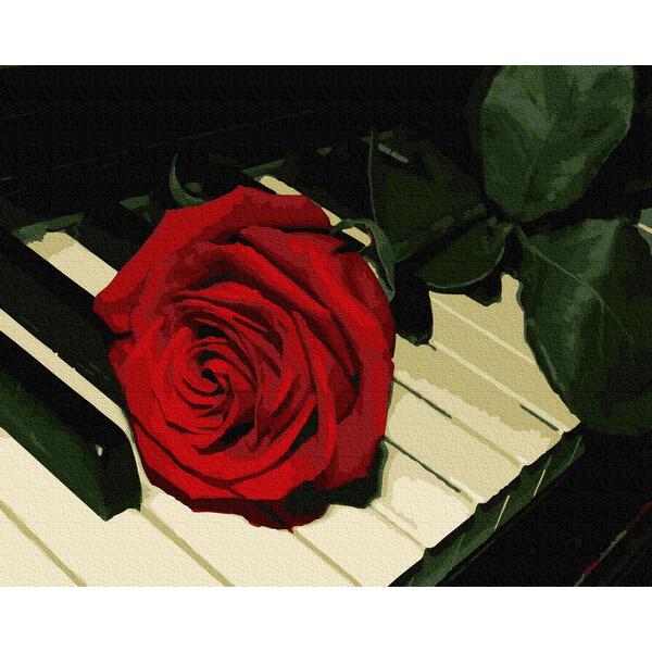 Картина по номерам Цветы - Троянда піаніста