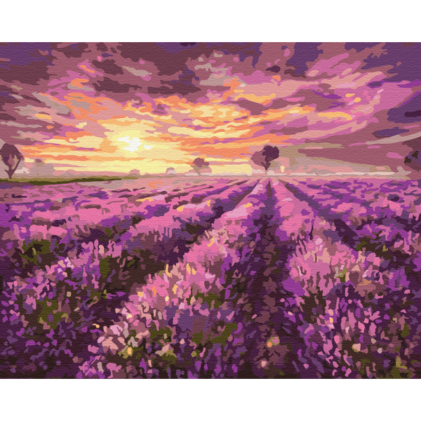 Картина по номерам Пейзажи - Лавандовый закат
