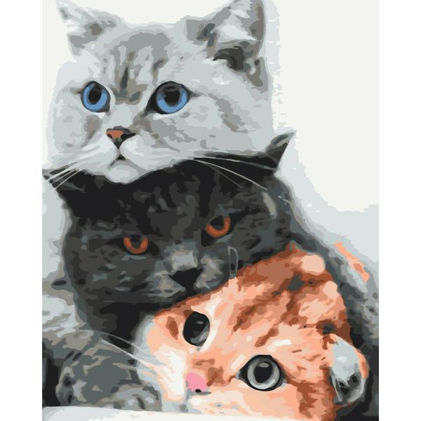 Картина по номерам Уникальные сюжеты - Котики - муркотики