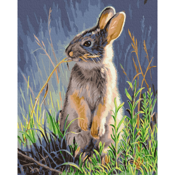 Картина по номерам Животные, птицы и рыбы - Лесной заяц
