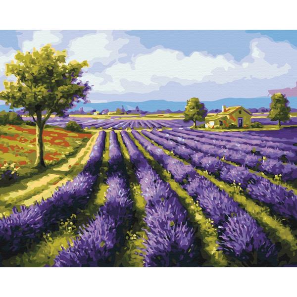 Картина по номерам Пейзажи - Лавандовые поля