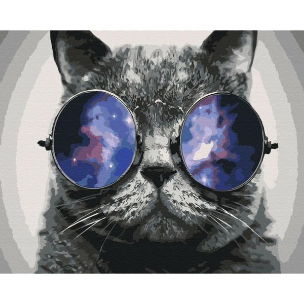 Картина по номерам Животные, птицы и рыбы - Котик на Маями