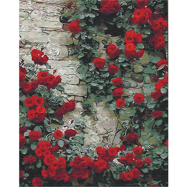 Картина по номерам Цветы - Квіти біля будинку
