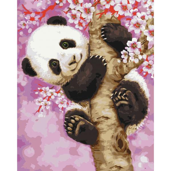 Картина по номерам Животные, птицы и рыбы - Панда на сакурі