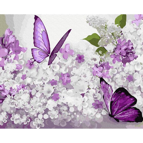 Картина по номерам Животные, птицы и рыбы - Бузкові метелики
