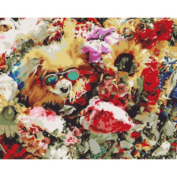 Картина по номерам Животные, птицы и рыбы - Собачка в цветах
