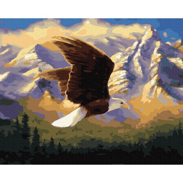 Картина по номерам Животные, птицы и рыбы - Гірський орел