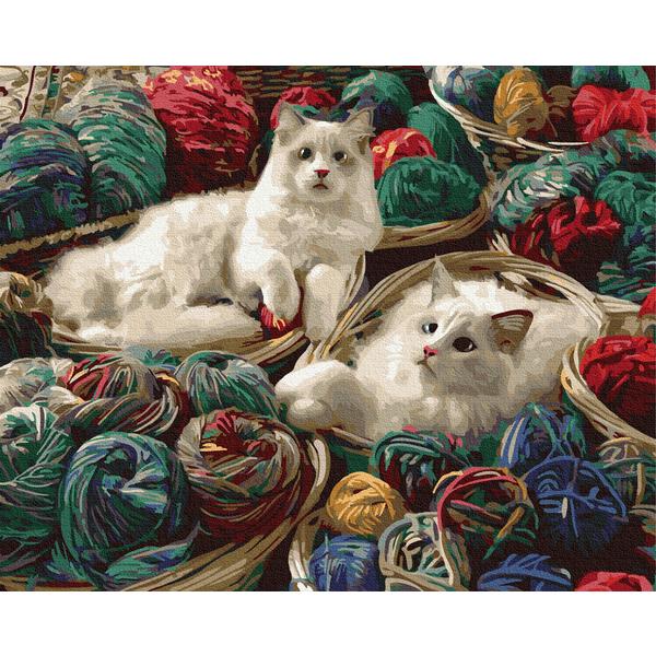 Картина по номерам Животные, птицы и рыбы - Котики в клубочках