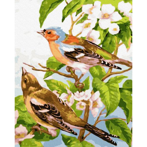 Картина по номерам Животные, птицы и рыбы - Весняні пташечки