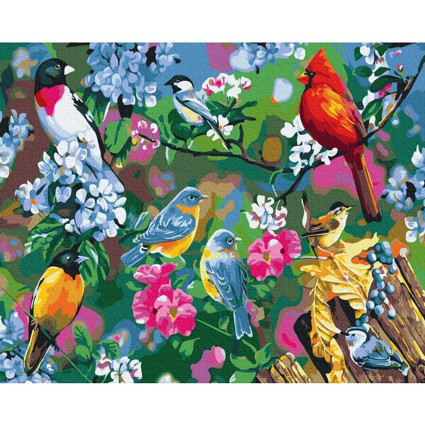 Картина по номерам Животные, птицы и рыбы - Яркие птицы