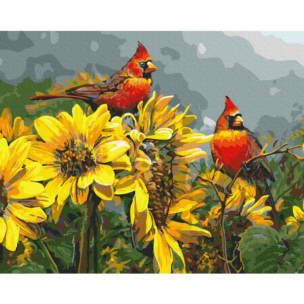 Картина по номерам Животные, птицы и рыбы - Солнечные птицы