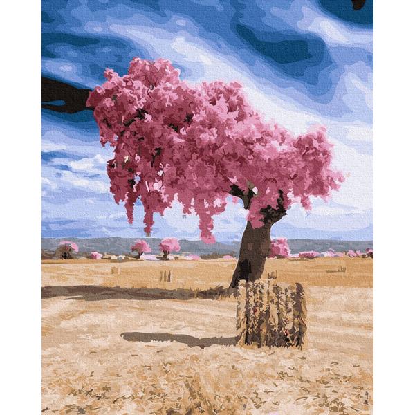 Картина по номерам Пейзажи - Чудо в пустыне