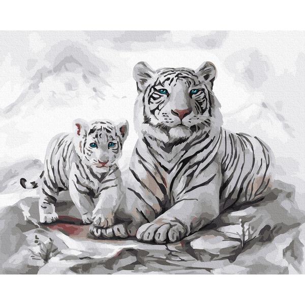 Картина по номерам Животные, птицы и рыбы - Белые тигры