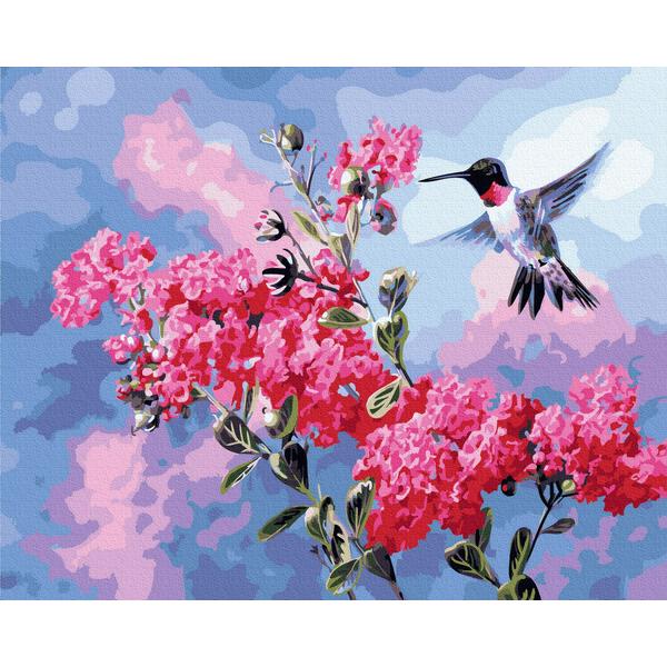 Картина по номерам Животные, птицы и рыбы - Колибри в цвету